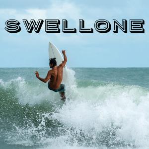 woocommerce surfer