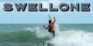 woocommerce surfer email header